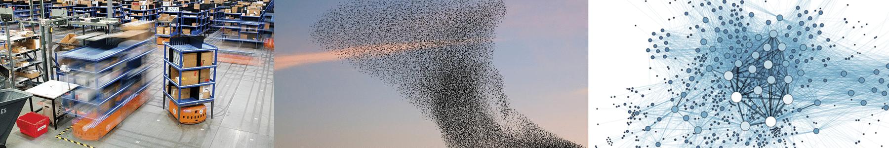 Exemplos de paradigma Swarm